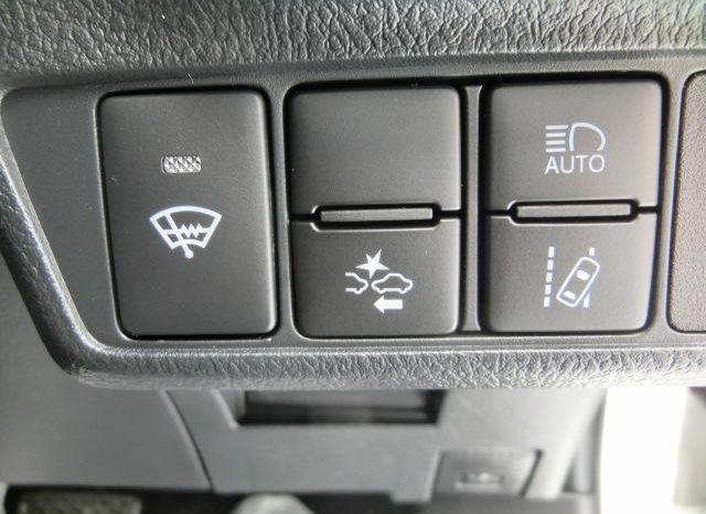 Toyota AXIO WXG 2019 full